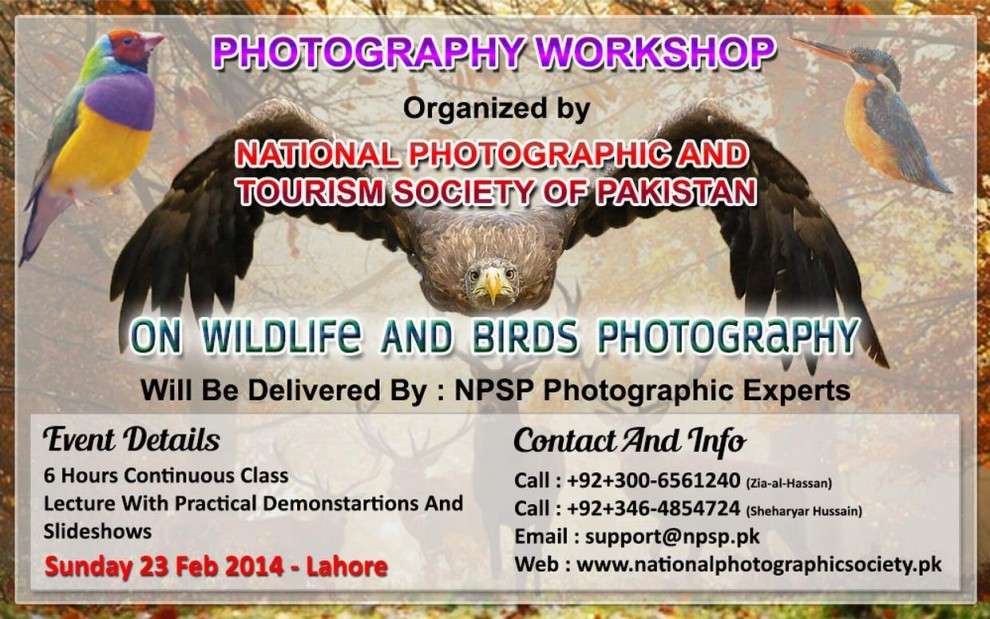 02.-Photography-Workshop-In-Lahore-Pakistan-On-Wildlife-And-Birds-Photography