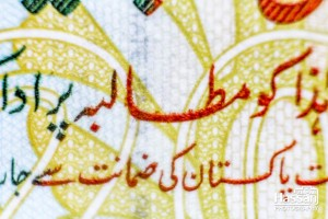 05-Feb-2015-A-Macro-Photo-Of-20-Rupee-Note-8